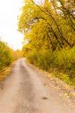 土路在秋天 免版税库存图片