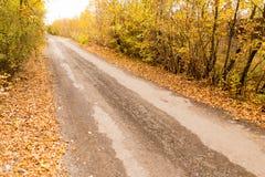 土路在秋天 免版税图库摄影