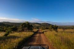 土路布什动物野生生物徒步旅行队通信工具 库存照片