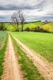 土路通过绿色牧场地和多云天空 免版税图库摄影