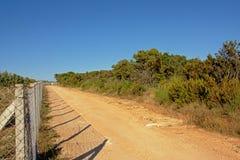 土路通过maquis风景 免版税库存图片