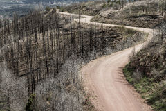 土路通过Waldo峡谷森林火灾在科罗拉多 免版税库存图片