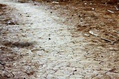黏土破裂的干燥地面季节 免版税图库摄影