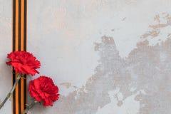 圣乔治丝带和红色康乃馨,可以9次胜利天概念,第二次世界大战的标志 库存图片