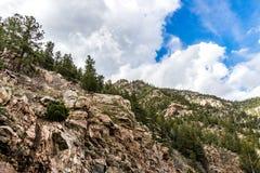 圣伊莎贝尔国家森林落矶山脉视图在科罗拉多 图库摄影