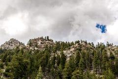 圣伊莎贝尔国家森林落矶山脉视图在科罗拉多 库存图片