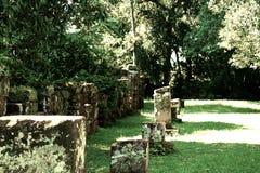 圣伊廖齐废墟,密西昂奈斯,阿根廷 免版税库存图片