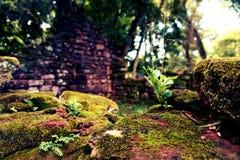 圣伊廖齐废墟,密西昂奈斯,阿根廷 免版税库存照片