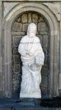 圣伯多禄雕塑 库存照片