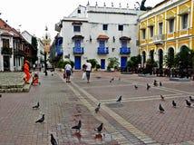 圣佩德罗火山克拉弗广场,在历史名城卡塔赫钠,哥伦比亚 库存图片