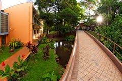 圣保罗大学在里贝朗普雷图-巴西 2017年7月 图库摄影