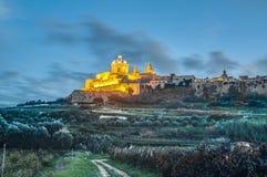 圣保罗大教堂在姆迪纳,马耳他 库存照片