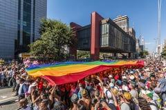 圣保罗州LGBT骄傲游行2014年 免版税图库摄影