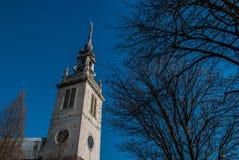 圣保罗` s大教堂在伦敦 免版税库存照片