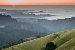 圣克鲁斯山有雾的森林和海洋日落  库存图片