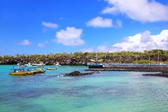 圣克鲁斯岛的,加拉帕戈斯Puerto阿约鲁港口国民同水准 库存照片