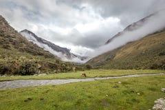 圣克鲁斯艰苦跋涉,山脉布朗卡,秘鲁南美风景  免版税库存图片