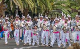 圣克鲁斯de特内里费岛狂欢节2014年 库存图片