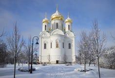 圣凯瑟琳晴朗的冬日大教堂  Tsarskoye Selo 库存图片