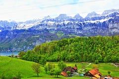 圣加连视图瑞士 库存照片