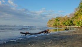 圣卡塔利娜海滩 图库摄影