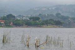圣卢卡斯Toliman, Solola,危地马拉 海滩las conchitas湖Atitlan 免版税图库摄影