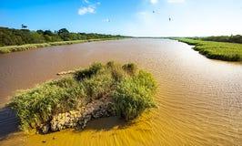 圣卢西亚南非的盐水湖 免版税图库摄影