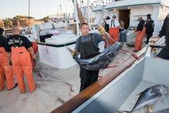 圣地亚哥,美国- 2015年11月17日-卸载金枪鱼的渔船在日出 免版税图库摄影
