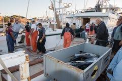 圣地亚哥,美国- 2015年11月17日-卸载金枪鱼的渔船在日出 库存照片