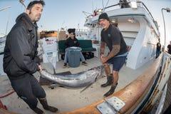 圣地亚哥,美国- 2015年11月17日-卸载金枪鱼的渔船在日出 免版税库存照片