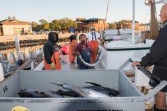 圣地亚哥,美国- 2015年11月17日-卸载金枪鱼的渔船在日出 图库摄影