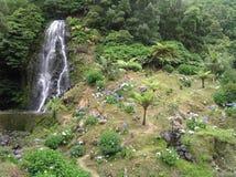 圣地米格尔,亚速尔群岛 免版税库存图片