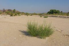 圣塔克拉里塔空的河床  库存照片