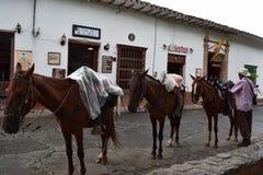 圣塔菲de安蒂奥基亚省,哥伦比亚- 6月26,207 :人和三匹马照片  库存照片