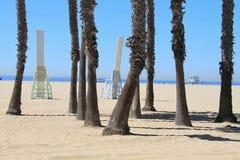 圣塔蒙尼卡海滩加利福尼亚棕榈和椅子 免版税图库摄影