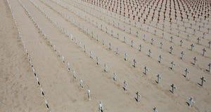 圣塔蒙尼卡海滩的,加利福尼亚纪念公墓 免版税库存图片