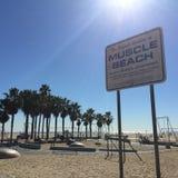 圣塔蒙尼卡肌肉海滩 免版税图库摄影