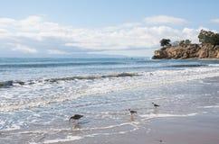 圣塔巴巴拉海景 库存图片