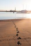 圣塔巴巴拉港口海滩脚印 免版税库存照片