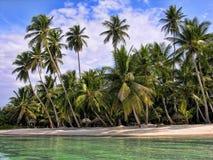 圣多明各,多米尼加共和国 免版税库存图片