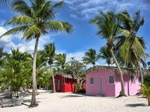 圣多明各,多米尼加共和国 库存照片