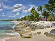 圣多明各,多米尼加共和国 免版税库存照片