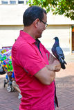 圣多明哥,多米尼加共和国 一个人看在他的胳膊的一只鸽子在哥伦布公园,圣多明哥殖民地区域  免版税库存照片
