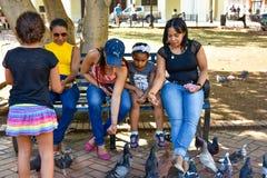 圣多明哥,多米尼加共和国 妇女喂养在哥伦布公园,圣多明哥殖民地区域的鸽子  免版税库存图片