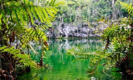圣多明哥Cenote  免版税库存图片