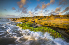 圣奥古斯蒂娜FL使华盛顿橡木公园Coquina海滩靠岸 免版税库存图片