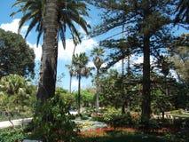 圣安东庭院 免版税库存图片