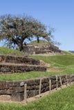 圣安德烈斯废墟在萨尔瓦多 免版税库存照片