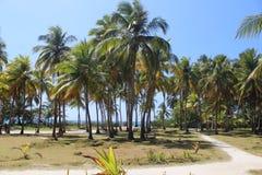 圣安德烈斯,哥伦比亚 免版税库存图片