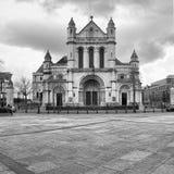 圣安那的大教堂教会在贝尔法斯特 免版税库存照片